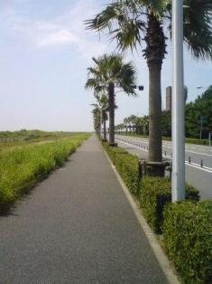 090822_road_4