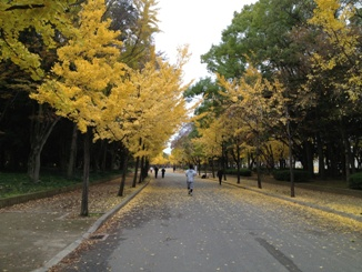 20121124_01_2